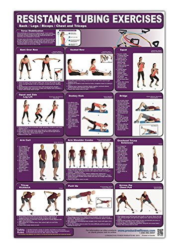 (Resistance Tubing Exercises Poster/Chart -Back/Legs/Biceps/Chest & Triceps Laminated; - Stretch Tubing Charts - Stretch Band Chart - Exercise Tubing ... Fitness - Group Fitness with Resistance Bands)