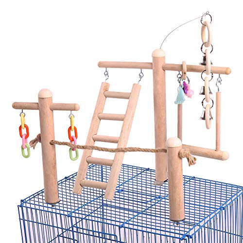 QBLEEV Bird Cage Stand Play Gym, Green Cheek Conure Perch Playground, Wood Parrot Climbing Ladder Chewing Chain Swing…