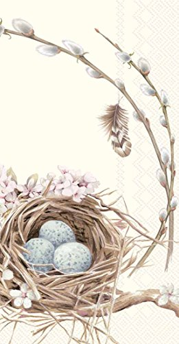 Boston International 32 Count 3-Ply Paper Guest Towel Buffet Napkins, Birds Nest with Eggs