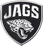 NFL Silver Auto Emblems