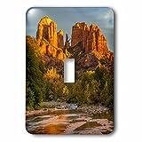 3dRose Danita Delimont - Deserts - USA, Arizona, Sedona, Cathedral Rock - Light Switch Covers - single toggle switch (lsp_278451_1)