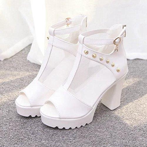 Dames de Les de Zipper de Sandale Maille Retour Blanc Design Plate Hauts Poissons la Talons Robe de PU pour Sandales Sexy Chaussures Bouche xw7P8qZ