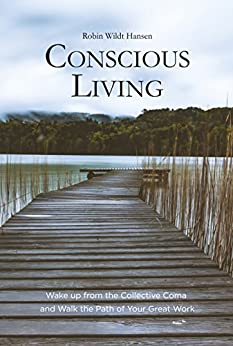 Conscious Living: Wake up from the Collective Coma and Walk the Path of Your Great Work by [Hansen, Robin Wildt]