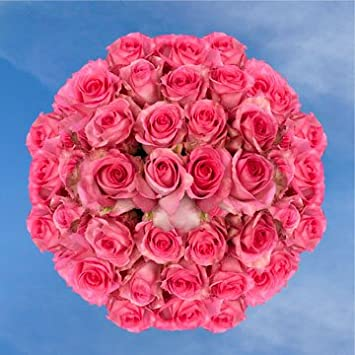 amazon com long stem deep pink roses 100 priceless roses long