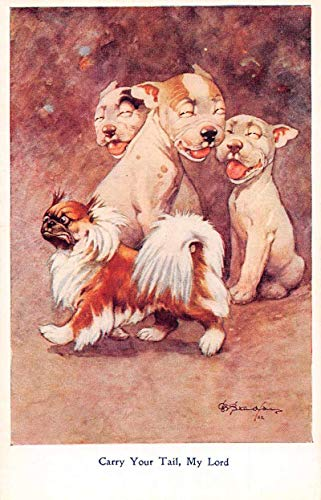 """Greetings Dogs""""Carry Your Tail"""" Artist Signed Vintage Postcard JJ649897"""