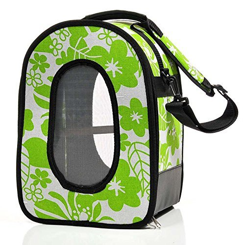 'A & E Gabbie 18.5  X13.5  X9 Soft sided Travel Bird Carrier Large verde by a & e gabbia Company