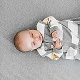 Burt's Bees Baby baby boys Blanket, 100% Organic