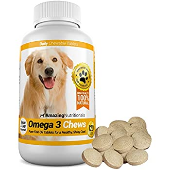Amazon.com : Skin and Coat Supplement for Dogs and Cats