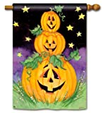 Three Jack Stack BreezeArt Halloween House Flag For Sale