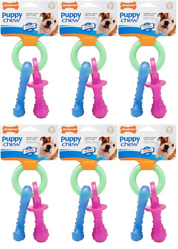 (Nylabone Puppy Teething Pacifier, Bacon Flavored 6ct (6 x 1ct))