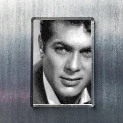 Seasons Tony Curtis - Original Art Fridge Magnet #js002 (Viking Single Refrigerator)