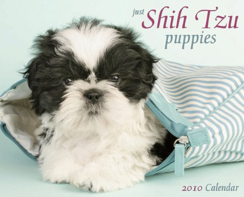 Just Shih Tzu Puppies 2010 (Shih Tzu 2010 Calendar)