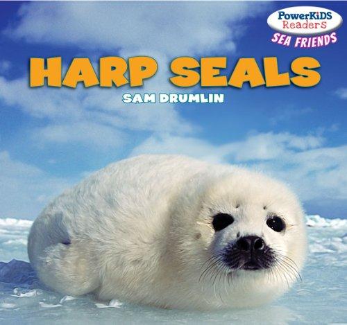 Harp Seals (PowerKids Readers: Sea Friends)
