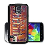 Liili Premium Samsung Galaxy S5 Aluminum Backplate Bumper Snap Case IMAGE ID: 9845534 Many people on the fresco in museum antropology in Mexico