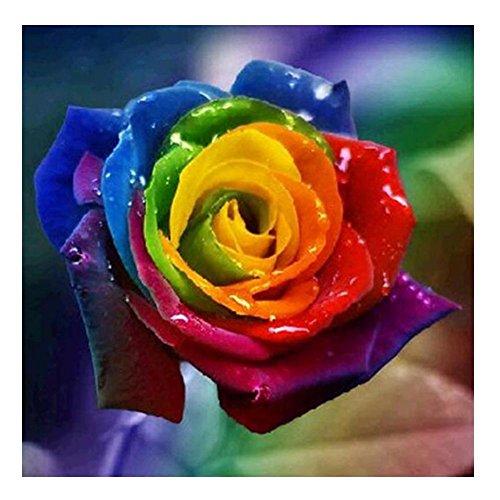 Diamond Painting, Nelnissa Rainbow Rose Painting 5D DIY Diamond Embroidery Cross Stitch Kit Home Decor