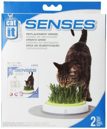 Amazon.com: CATIT Diseño Senses Cat Toy Césped Jardín Refill ...