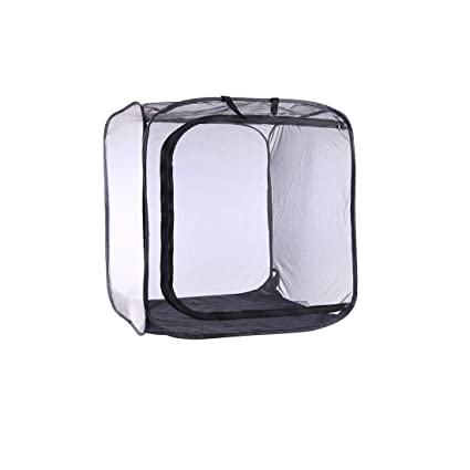 Leoie Mini House Garden Growing Tents Insect Flower Plant Translucent Greenhouse 30*30*30