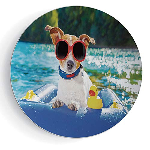 6' Funny Jack Russell Dog with Sunglasses Sitting on The Lake Beach Puppy at Beach Picture