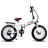 Pride Folding Electric Mountain Bike with 20 Inch Fat Tire,48V Lithium Battery 250W Aluminum Mountain Snow Beach Bicycles, Shimano 6 Speeds Gear For Sale