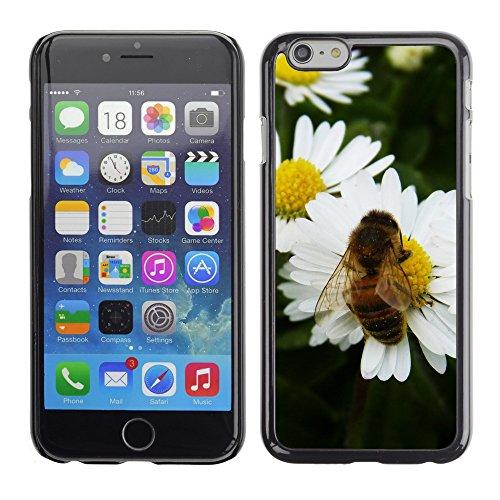 """Premio Sottile Slim Cassa Custodia Case Cover Shell // V00003225 daisy bee // Apple iPhone 6 6S 6G 4.7"""""""