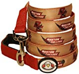 Dog-E-Glow Boston College Eagles LIghted LED Dog Leash