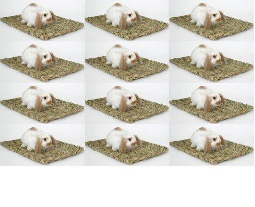 Peter's Natural Woven Grass Mat 12pk