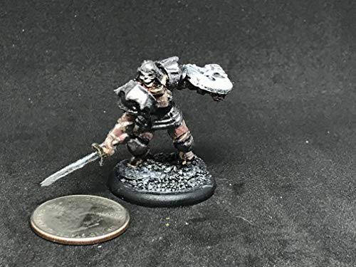 - Barrow Warden - Reaper Miniatures mini miniature Warhammer Fantasy Dungeons and Dragons D&D 25mm plastic painted