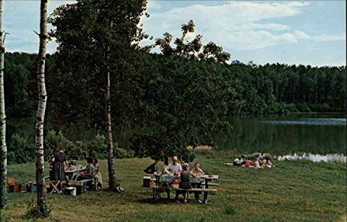 Amazon.com: Picnic Spot on Lake Storman, International Peace Garden Dunseith, North Dakota Original Vintage Postcard: Entertainment Collectibles