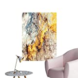 SeptSonne Wall Painting Bright Color Paint Texture backgroun in Light Soft Paints High-Definition Design,20' W x 32' L
