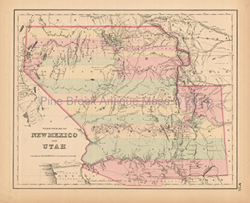 New Mexico Utah Antique Map Original Decor History Anniversary Holiday Gift Colton 1858