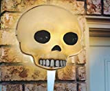 Pumpkin Hollow 12.5 in. Halloween Outdoor Wall Window Decor Skull Porch Light Cover 4 Pcs