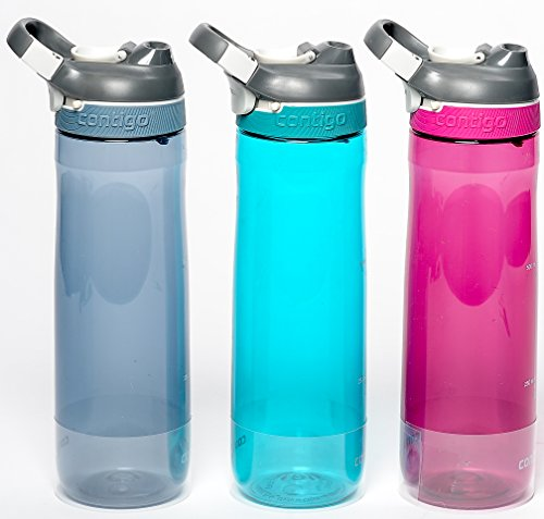 Contigo AUTOSEAL Spill-Proof Water Bottles, 24 Oz, Stormy Weather/Jade/Sangria - Total 3 Bottles