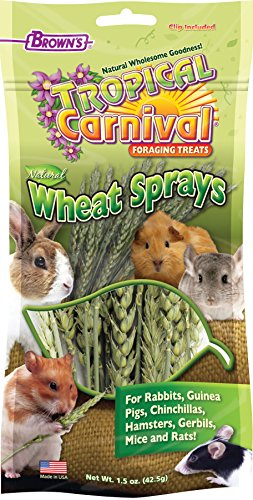 F.M. Brown's Tropical Carnival Natural Wheat Sprays Foraging Treat for Rabbits, Chinchillas, Guinea Pigs, Hamsters, Gerbils, Mice and Rats, 1.5-oz Bag - All-Natural, Cage Clip Included