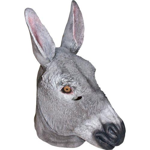 Jackass Donkey