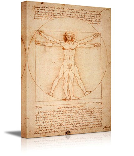 Vitruvian Man by Leonardo Da Vinci Giclee Canvas Prints Wrapped Gallery Wall Art | Stretched and Framed Ready to Hang - 16'' x 24'' by wall26