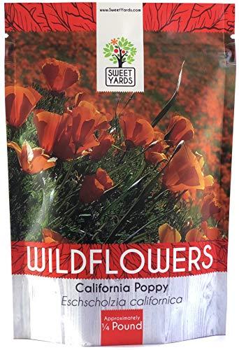 California Orange Poppy Wildflower Seeds - Bulk 1/4 Pound Bag - Over 80,000 Native Seeds - California State Flower! ()