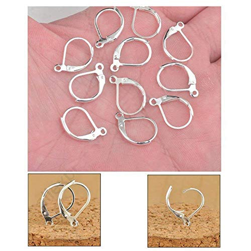 Silver Plated Copper French Earring Hook Lever Back Earwires Jewelry Findings/Earring Making Supplies Kit with Earring Hooks,Earring Backs,Earrings Posts (100 PCS) ()