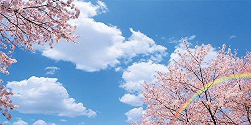 springtime-bliss-skypanels-replacement-fluorescent-light-diffuser