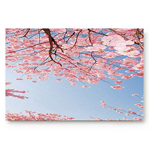 MOAIER 23.6 x 15.7inch Mt Fuji and Cherry Blossom in Japan Spring Season Doormat Water Absorbent Non-Slip Entrance Shoes Scraper Rug Indoor Kitchen Dining Living Hallway Bathroom Pet Mats