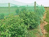 HSelar Best Bird Netting - Protect Plants and Fruit