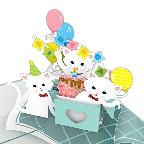 Colorpop Cards Cats Birthday Party Birthday Pop Up Card, birthday 3D card, birthday pop up card ()