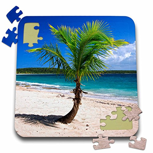 Danita Delimont - Beaches - Caribbean, Puerto Rico, Vieques. Lone coconut palm on Red Beach. - 10x10 Inch Puzzle (pzl_277165_2)