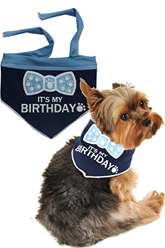 I See Spot It's My Birthday Large Pet Bandana Scarf in Navy by I See Spot