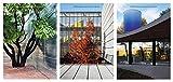 img - for OFFICE Kersten Geers David Van Severen Vol. 1, 2 & 3 book / textbook / text book