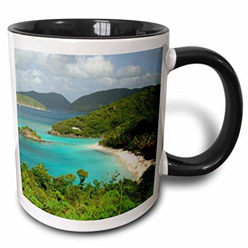3dRose mug_70005_4 USVI, St John, Trunk Bay, Virgin Islands NP CA37 CMI0147 Cindy Miller Hopkins Two Tone Black Mug, 11 oz, - St Outlets John
