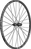 """DT Swiss M1900 Spline 29"""" Rear Wheel 12 x 148mm Thru Axle Boost Spacing Center Lock Disc"""