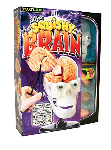 Squishy Human Body (SmartLab Toys The Amazing Squishy Brain)