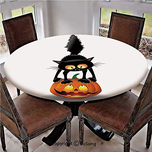 Elastic Edged Polyester Fitted Table Cover,Black Cat on Pumpkin Spooky Cartoon Characters Halloween Humor Art,Fits up 56