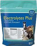 Milk & Co. 633132 Electrolytes Plus Multi-Species Supplement, 6 lb