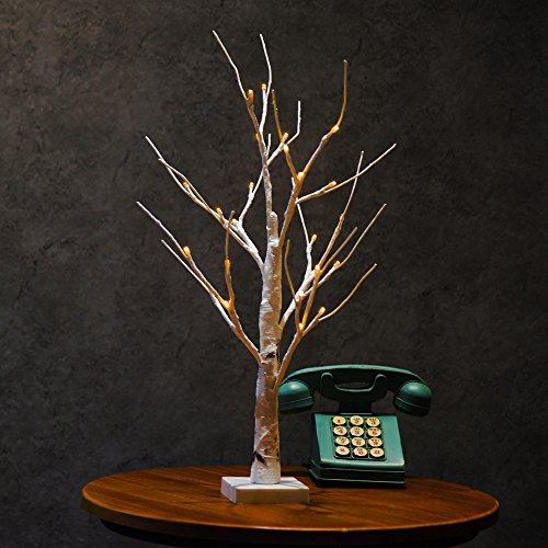 Birch 2' (TANGON Birch Desk Tree Light, 23inch 24 LEDs Birch Tree Desk Top Bonsai Tree Light with Low Voltage Transformer Perfect for Home Festival Party Wedding Christmas Indoor Outdoor Decoration (Warm Whit)